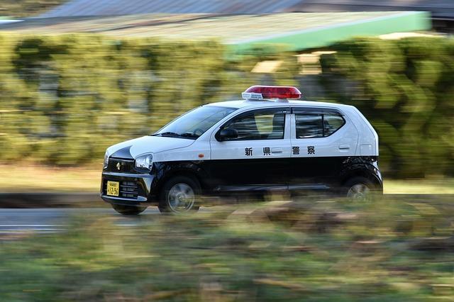 警察への通報は必須・車が鹿にぶつかった事故で車の修理代は車両保険から出る?