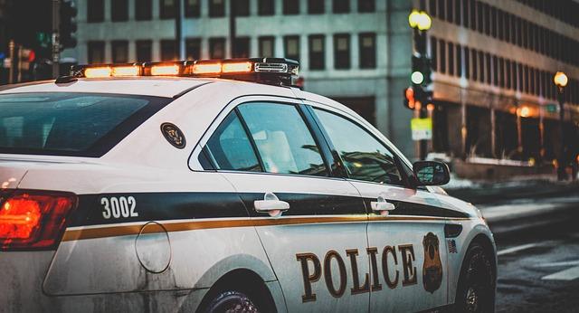 警察への通報は絶対に必要・イノシシ エゾシカ|野生動物との事故|車の修理は保険で?