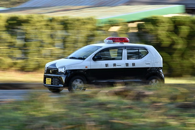 警察・道路緊急ダイヤルに連絡・ロードキル 事故|鹿を轢いたイノシシをはねた|保険と等級