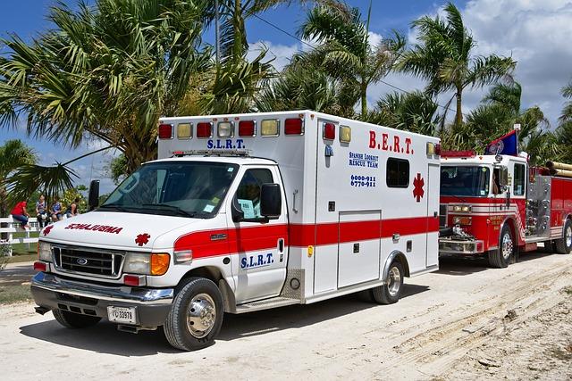 運転者・同乗者がケガ・保険・ロードキル 事故|鹿を轢いたイノシシをはねた|保険と等級
