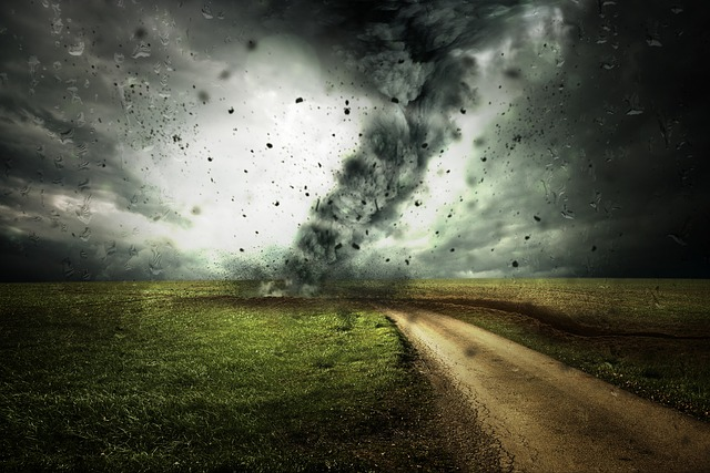 アクサダイレクト・車両保険・自動車保険・台風・等級・免責・全損・分損|詳細解説