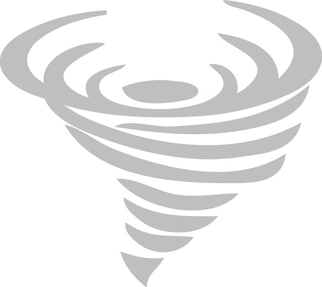 災害救助法・あいおいニッセイ・車両保険・自動車保険・台風・等級・免責・全損・分損|詳細解説