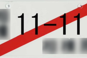 仮ナンバー・1日保険